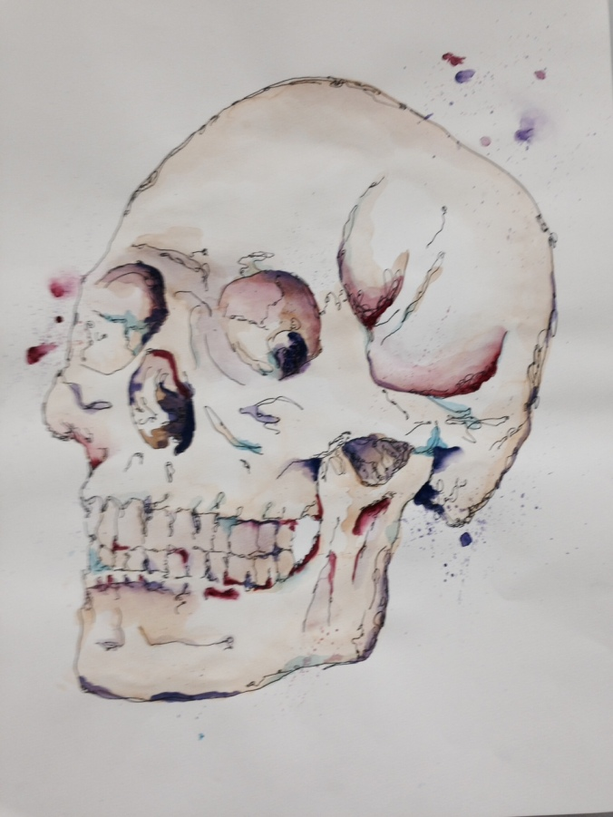 Awesome watercolor. Skills and skeletons are pretty popular in the classroom right now.